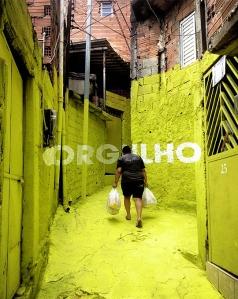 foto brasil